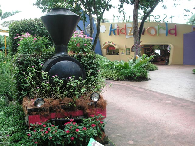 Rainforest kidsworld