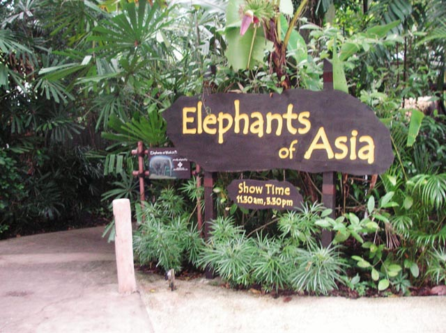 Elephants of Asia